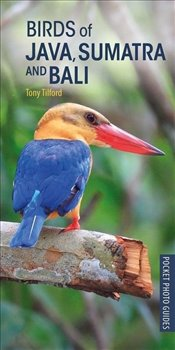 Birds of Java Sumatra and Bali  - Tilford, Tony