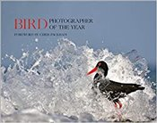 Bird Photographer of the Year -
